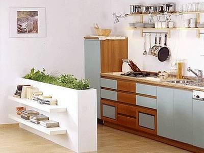 Piante e arredamento arredare casa con le piante for Arredamento per piccoli ambienti