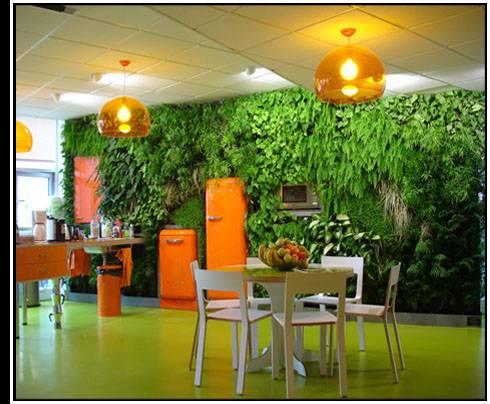 Piante e arredamento arredare casa con le piante for Arredare casa con le piante