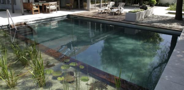 Piscine rettangolari fuori terra laghetti e piscine - Costo manutenzione piscina ...