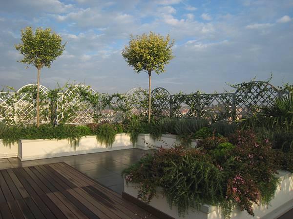Il terrazzo le piante diventano le protagoniste - Piante per il terrazzo ...